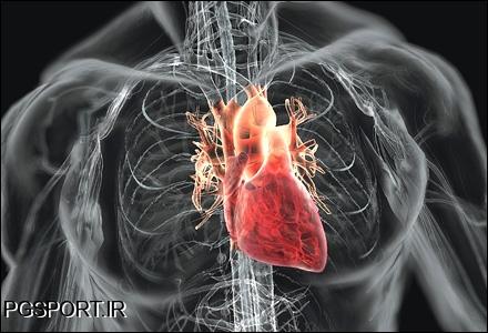 قلب انسان چگونه کار می کند