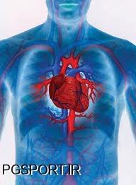 قلب و پرورش اندام