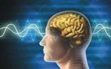 روش هاي خواندن ذهن ديگران و درك زبان بدن body language